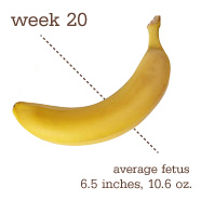 Baby at 20 weeks
