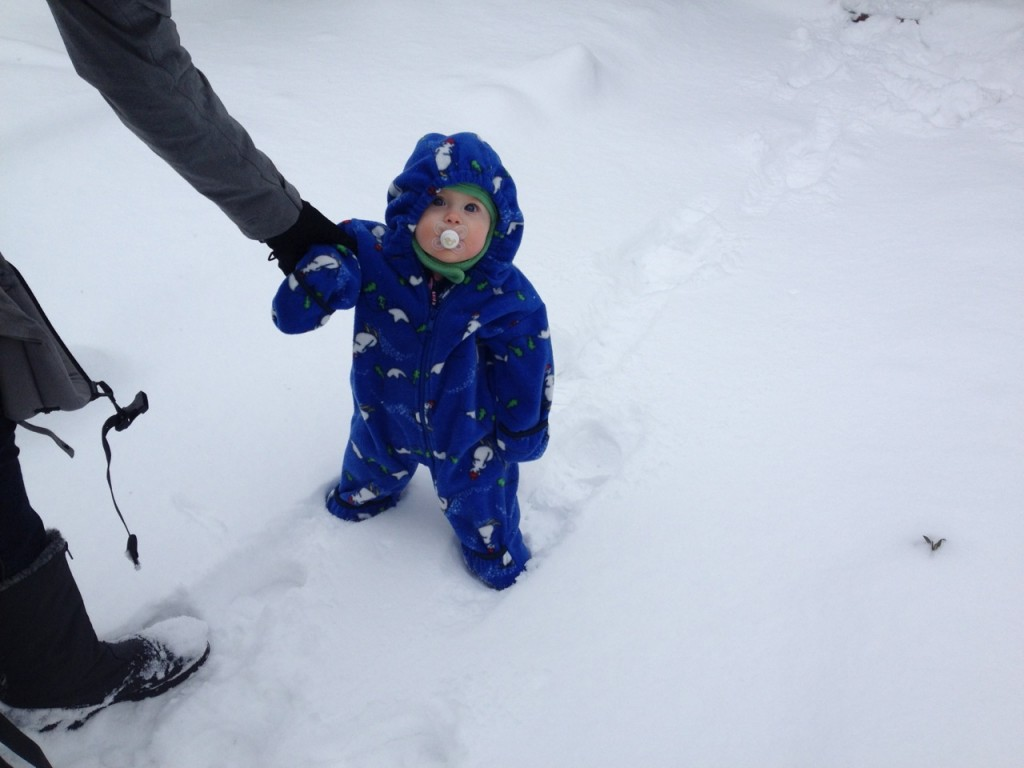 She loves to stand. So, of course, she just locked her legs and stood there when I tried to sit her in the snow.